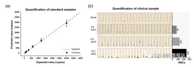 图6 定量检测目标DNA