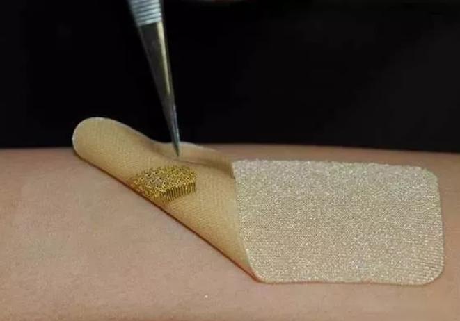 基于微流控技术的新型生物传感器可用于实时检测病原菌