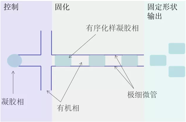 微流控技术合成凝胶原理简图