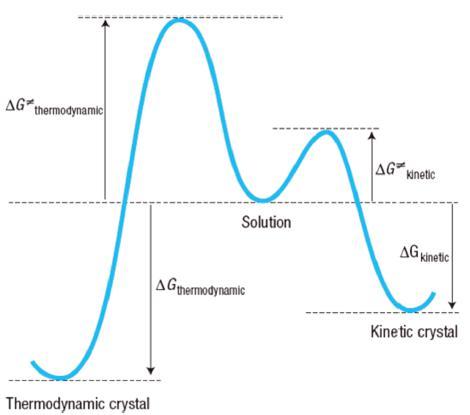 图3 从溶液到热力学和动力学晶体的假设转变;Δg热力学和Δg动力学之间的差异决定了动力学晶体的易形成性