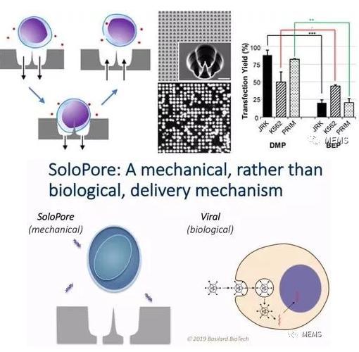 Basilard BioTech的SoloPore技术与病毒传递相比