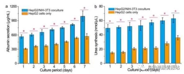 图片6.png 图5 肝细胞/成纤维细胞共培养和肝细胞培养的肝脏特异性功能的测定。在七天内测量的HepG2 / NIH-3T3共培养和HepG2培养的a)白蛋白分泌和b)尿素合成。