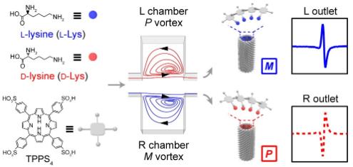 基于微尺度手性流体涡的氨基酸外消旋体定量检测