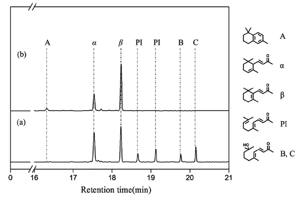 图8. 在不同条件下产物混合物的GC色谱图