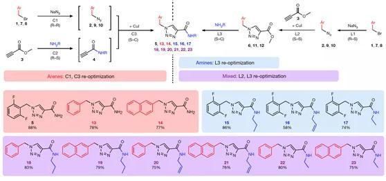 图 4 利用本方法进行卢非酰胺衍生物库的合成