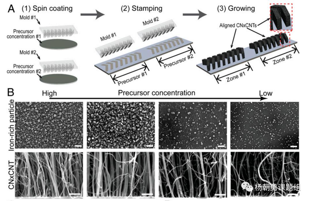 图 2压印的方法制作VIRRION及不同内部间隙的碳纳米管阵列