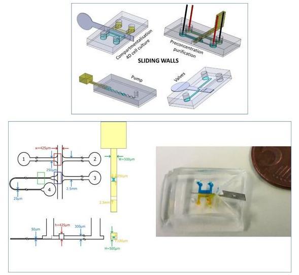 用于DNA预富集的微芯片和滑动壁设计