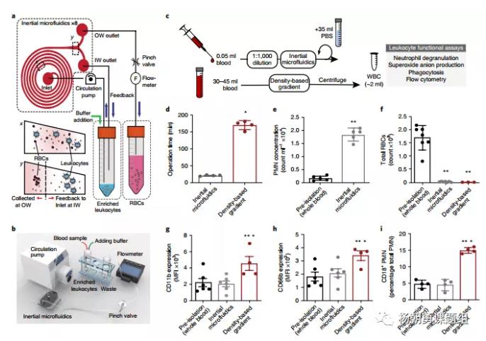 图1 惯性微流控系统用于分离全血中的白细胞原理图,及其与密度梯度离心法分离效果的对比