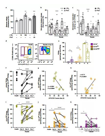 图2 中性粒细胞亚群(PWN)及其在败血症和健康患者中的作用