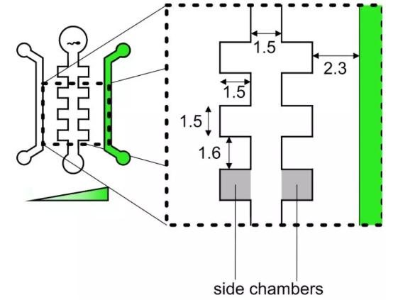 图1. 芯片设计原理图