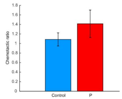 图4. 公猪精子的趋化比率