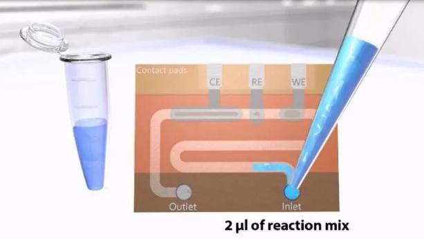 DNA聚合酶链反应