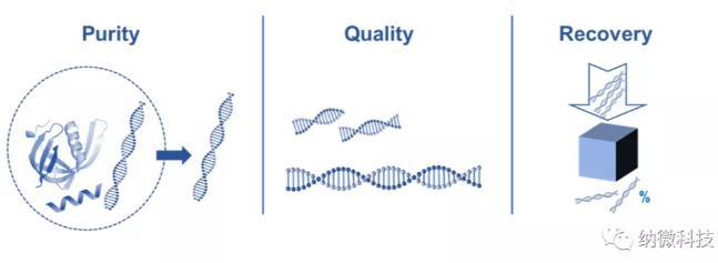 如何评估磁珠法提取核酸的效果?
