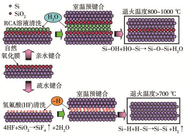 图1 硅晶圆的亲水键合和疏水键合原理