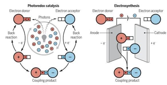 微流体电催化平台,成功实现合成自由基化学应用大突破