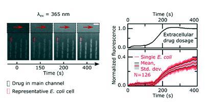 单细胞微流控技术帮助对抗抗生素耐药性