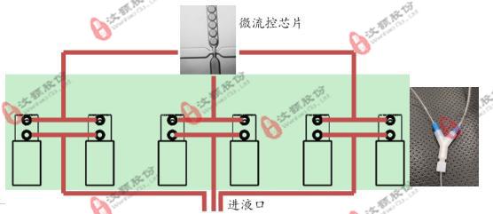 3-水印.jpg
