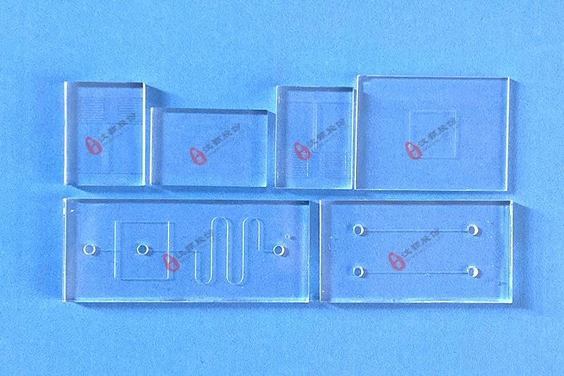 Glass microfluidic chip