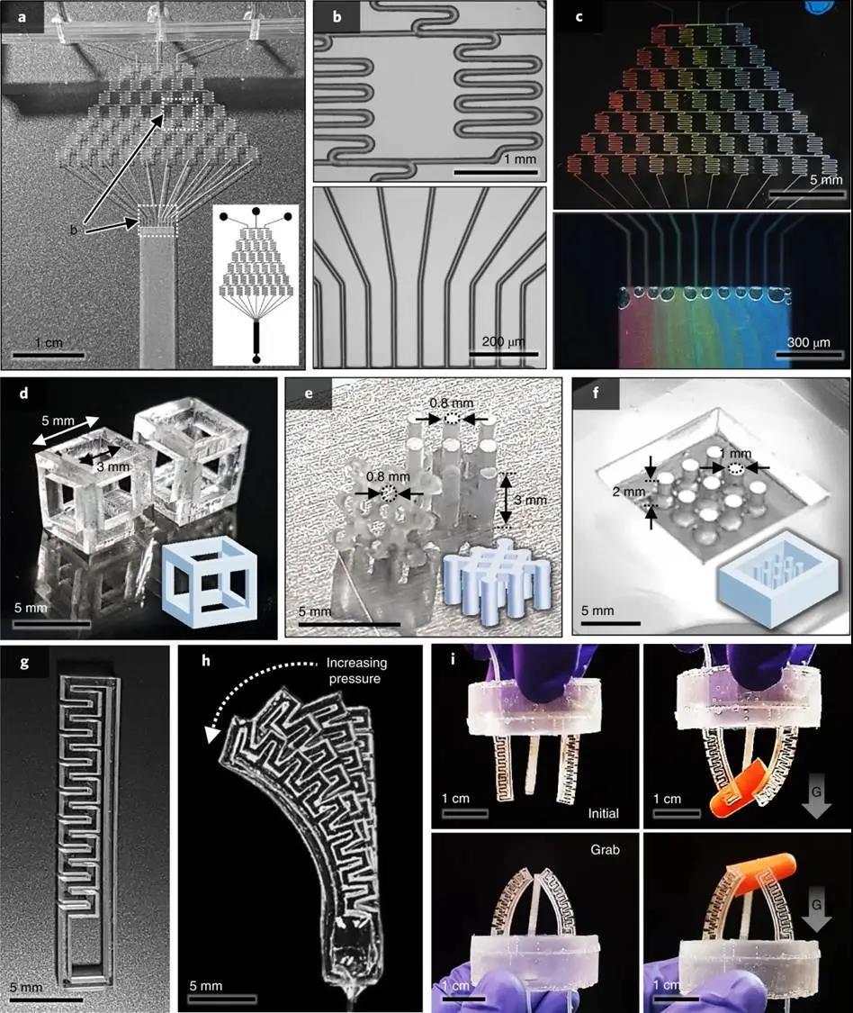 展示的PDMS器件的制造