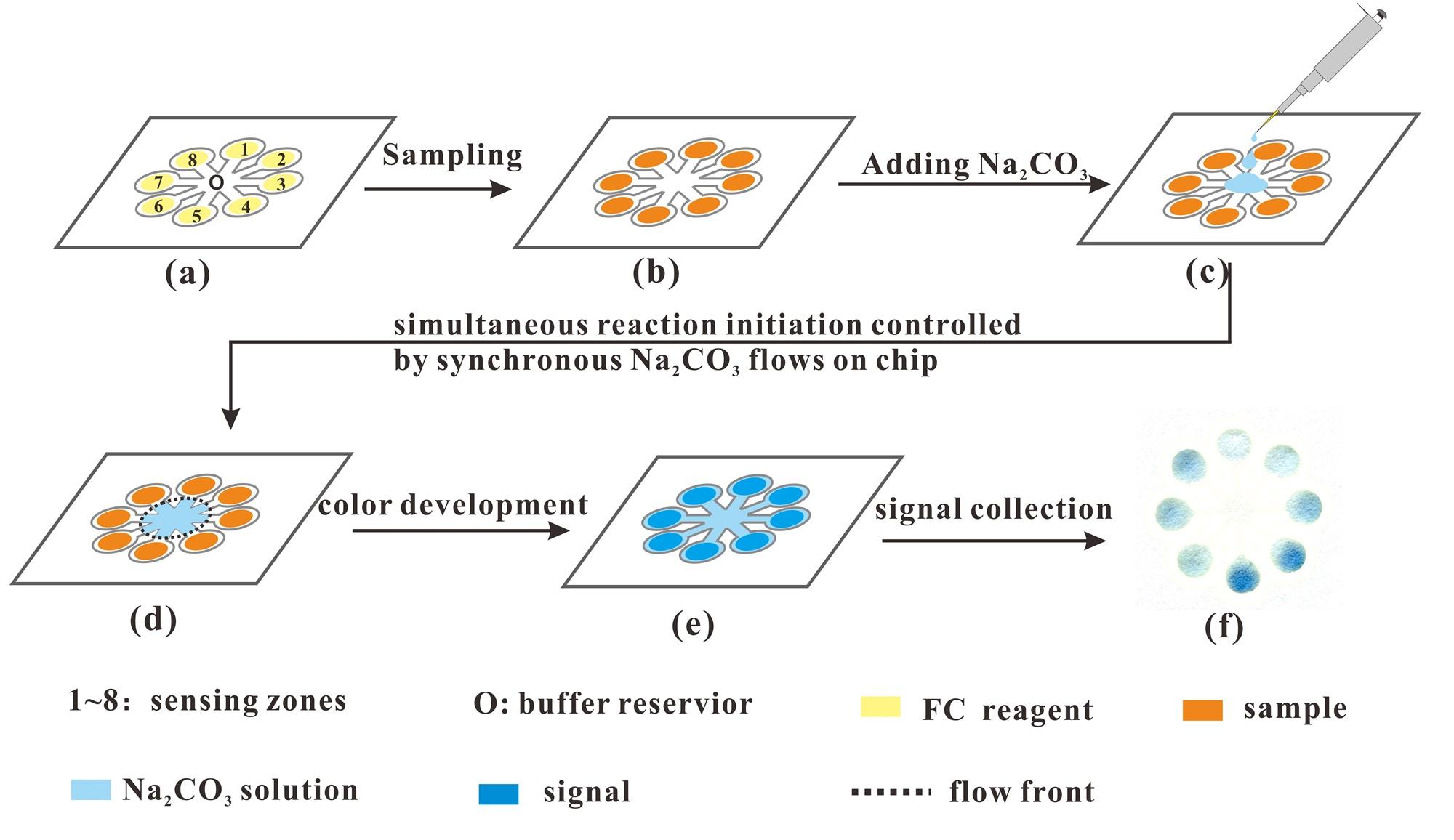 微流控纸芯片技术 10分钟可测出茶多酚含量
