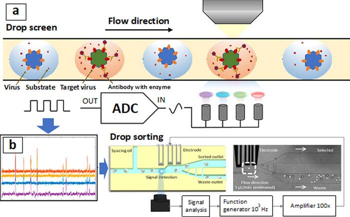 用于呼吸道病毒检测的微流体样品制备