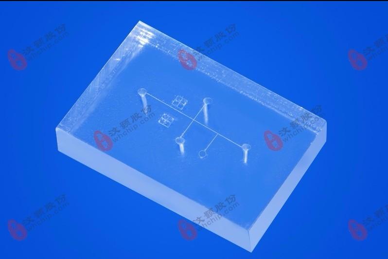 微流控芯片.jpg