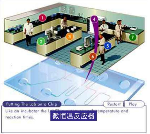 微流控芯片实验室 - 微恒温反应器