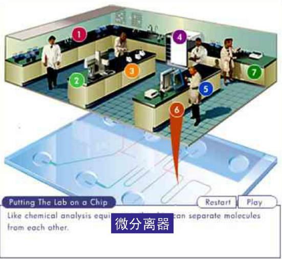 微流控芯片实验室 - 微分离器