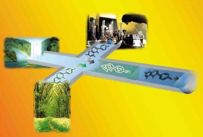 汶颢微流控芯片实验室整体组建解决方案服务提供商
